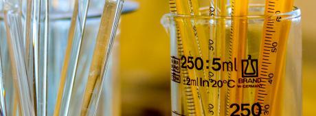 Bionedbrydelig lim binder løsningerne sammen